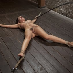 Roxanne Rae in 'Kink' 65 Minutes of Hell!! (Thumbnail 9)