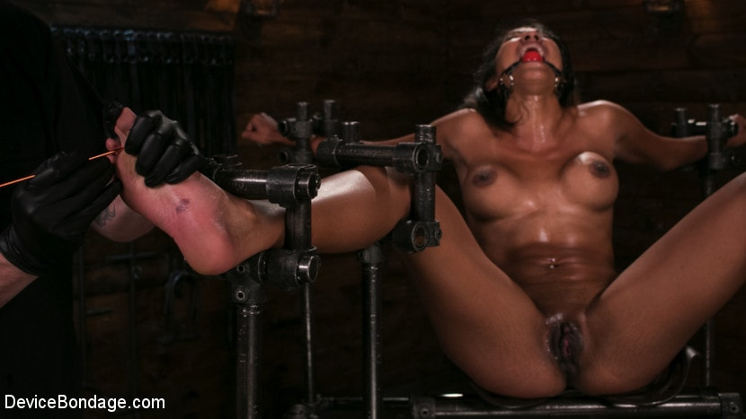 Kink 'Fresh Meat - Sadie Santana' starring Sadie Santana (Photo 12)