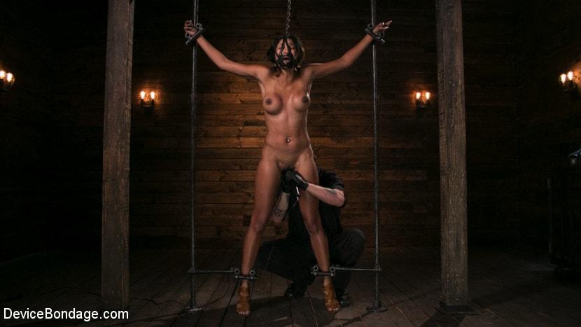 Kink 'Fresh Meat - Sadie Santana' starring Sadie Santana (Photo 15)