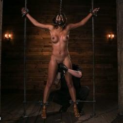 Sadie Santana in 'Kink' Fresh Meat - Sadie Santana (Thumbnail 15)