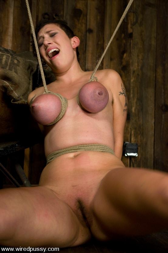 Kink 'Big tits Bound and shocked' starring Saffron (Photo 4)