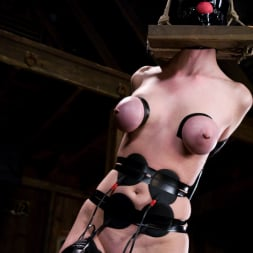 Sandra Romain in 'Kink' Cherry Torn gets her pussy Wired!! (Thumbnail 3)