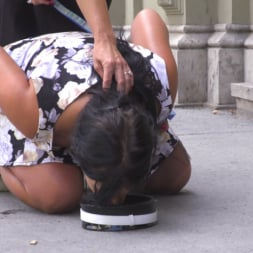 Sandra Romain in 'Kink' Nervous Newbie Naomi Gets Fucked in her Neighborhood (Thumbnail 7)