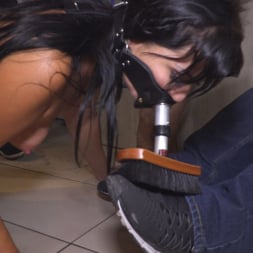 Sandra Romain in 'Kink' Nervous Newbie Naomi Gets Fucked in her Neighborhood (Thumbnail 26)