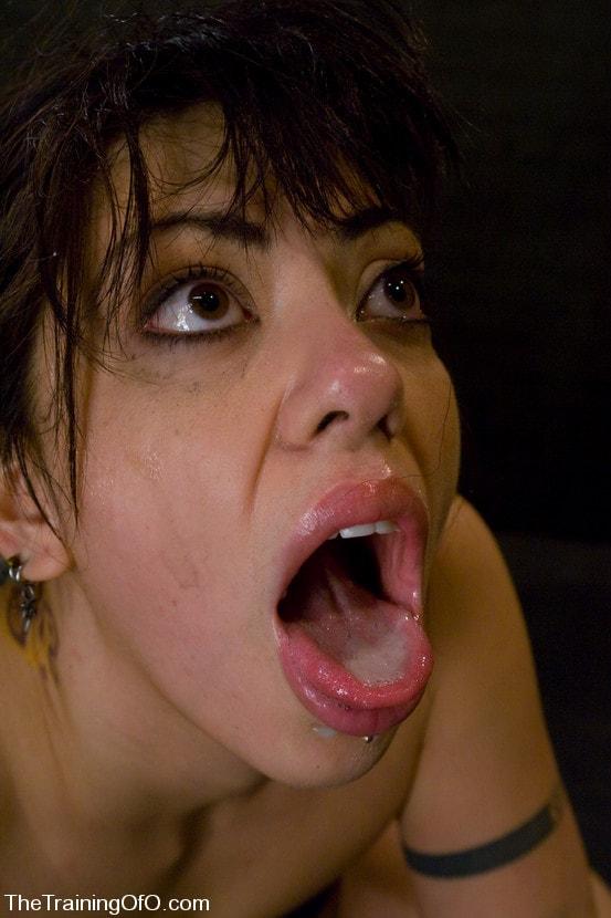 Kink 'The Training of Satine Phoenix, Day One' starring Satine Phoenix (Photo 11)