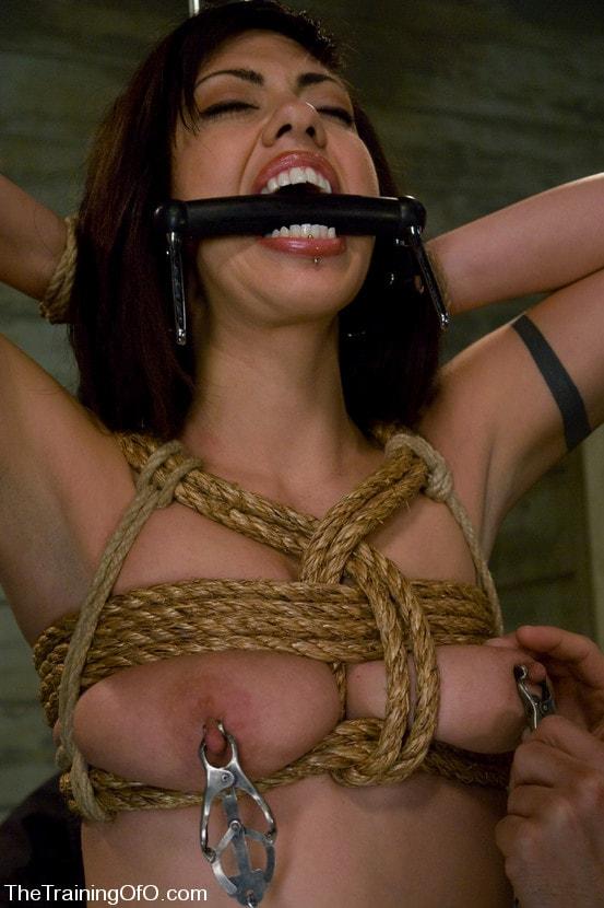 Kink 'The Training of Satine Phoenix, Day One' starring Satine Phoenix (Photo 19)
