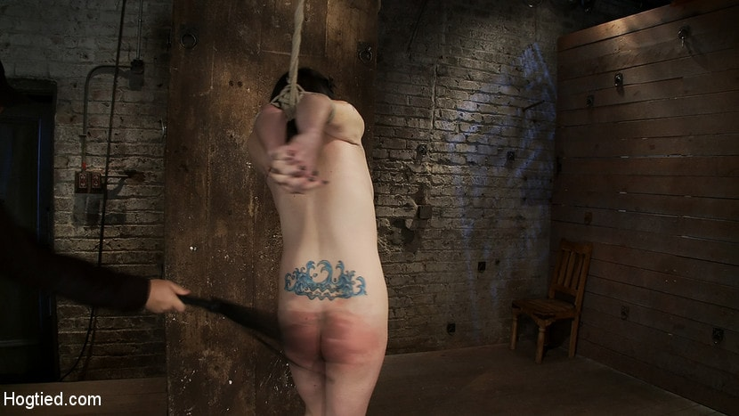 Kink 'Brutal Elbow and crotch rope suspension. Caned, severely flogged and made to cum, left to suffer.' starring Scarlet Faux (Photo 11)