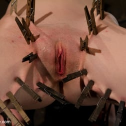 Scarlet Faux in 'Kink' Your Suffering Is a Turn On. (Thumbnail 14)