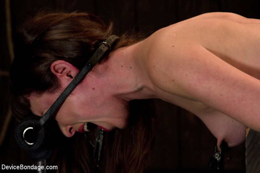 Kink 'is ass-fucked, whipped and caned in hard bondage.' starring Seda (Photo 4)