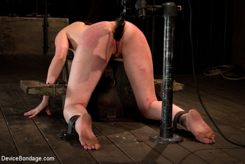 Kink 'is ass-fucked, whipped and caned in hard bondage.' starring Seda (Photo 5)