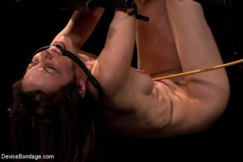 Kink 'is ass-fucked, whipped and caned in hard bondage.' starring Seda (Photo 11)