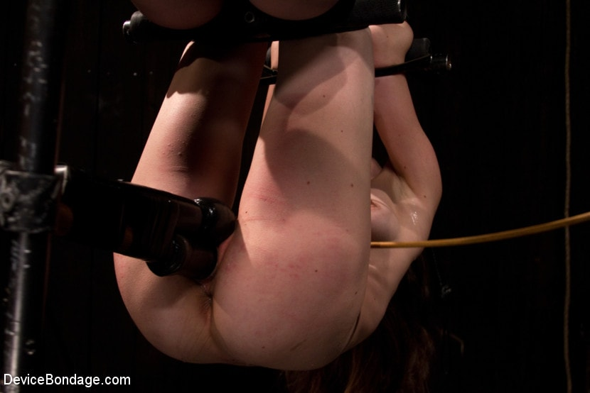 Kink 'is ass-fucked, whipped and caned in hard bondage.' starring Seda (Photo 13)
