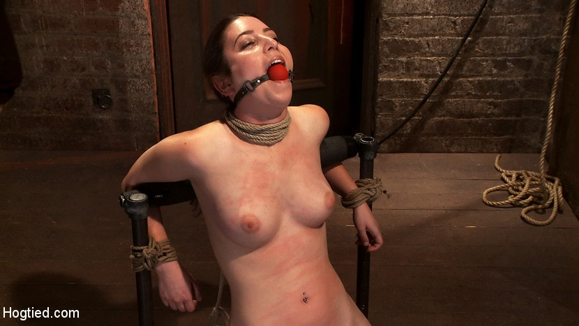 Kink 'Local girl next door bound up tight and helpless, flogged, nipple clamped, made to suck cock, and cum!' starring Serena Blair (photo 11)