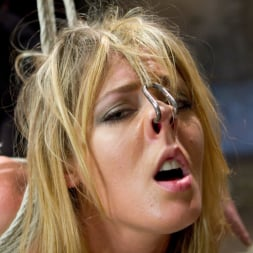 Sheena Shaw in 'Kink' Blonde fuck slut squeals and begs to cum. (Thumbnail 13)