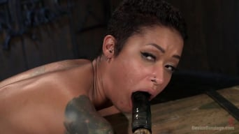Skin Diamond in 'Penthouse Pet Skin Diamond Squirting in Brutal Bondage and Punished!!'