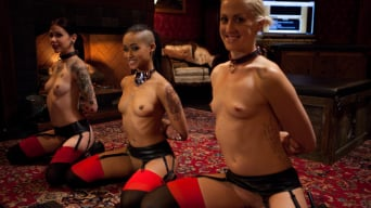 Skin Diamond in 'Restriction Lifted'