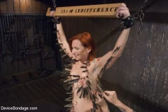 Sophia Locke - 2 x 4 of Indifference (Thumb 03)