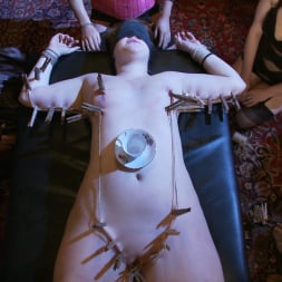 Sophie Monroe in 'Kink' Sophie's Tea Party (Thumbnail 15)