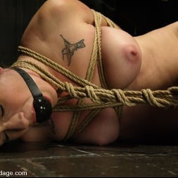 Stacey Stax in 'Kink' Stacey Stax (Thumbnail 10)