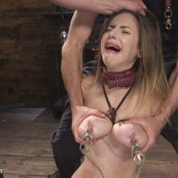 Stella Cox in 'Kink' Fear Training: Stella Cox (Thumbnail 15)