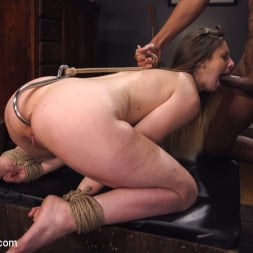 Stella Cox in 'Kink' Immigration Authority (Thumbnail 11)