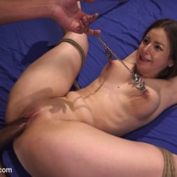 Stella Cox in 'Kink' Immigration Authority (Thumbnail 13)