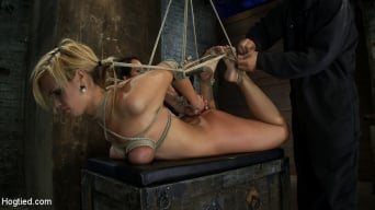 Tara Lynn Foxx in 'Category 5 Suspension, Made to Suck Cock and Cum All Tying on Screen, Amazing live rope bondage!'