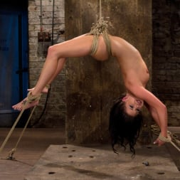 Tessa Taylor in 'Kink' Sexy girl next door is bound and suspended, stretched to the limits of the human body So helpless! (Thumbnail 1)