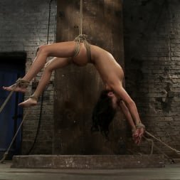 Tessa Taylor in 'Kink' Sexy girl next door is bound and suspended, stretched to the limits of the human body So helpless! (Thumbnail 16)