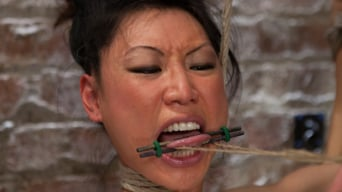 Tia Ling in 'Bitch Bound In Bag and Extreme Spread Eagle Special!'