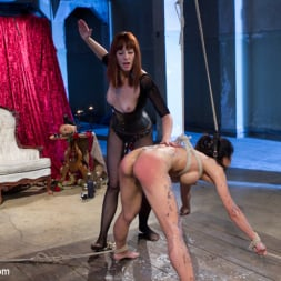Tia Ling in 'Kink' Maitresse Madeline and Tia Ling: A Three Year Reunion! (Thumbnail 8)