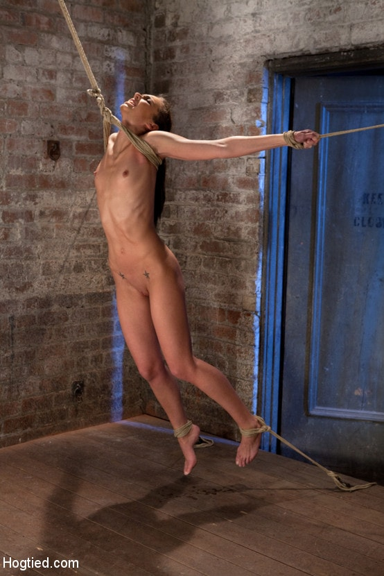 Kink 'It's her first hardcore Bondage shoot. She cums like a whore while gagged and suspended! Category 5' starring Tiffany Tyler (Photo 1)