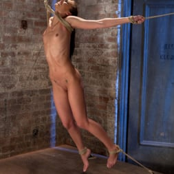 Tiffany Tyler in 'Kink' It's her first hardcore Bondage shoot. She cums like a whore while gagged and suspended! Category 5 (Thumbnail 1)