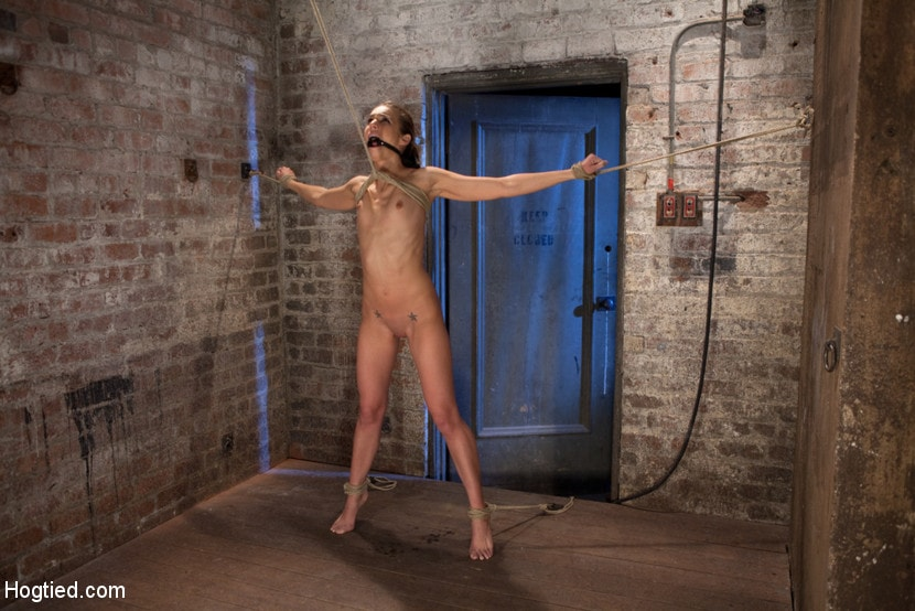 Kink 'It's her first hardcore Bondage shoot. She cums like a whore while gagged and suspended! Category 5' starring Tiffany Tyler (Photo 3)
