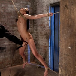 Tiffany Tyler in 'Kink' It's her first hardcore Bondage shoot. She cums like a whore while gagged and suspended! Category 5 (Thumbnail 6)