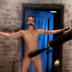 Tiffany Tyler in 'Kink' It's her first hardcore Bondage shoot. She cums like a whore while gagged and suspended! Category 5 (Thumbnail 10)
