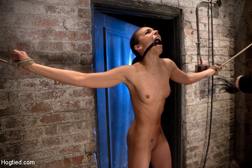 Kink 'It's her first hardcore Bondage shoot. She cums like a whore while gagged and suspended! Category 5' starring Tiffany Tyler (Photo 11)