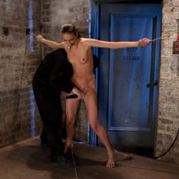Tiffany Tyler in 'Kink' It's her first hardcore Bondage shoot. She cums like a whore while gagged and suspended! Category 5 (Thumbnail 13)