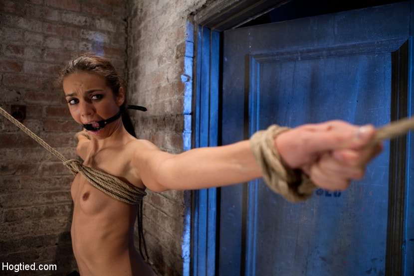 Kink 'It's her first hardcore Bondage shoot. She cums like a whore while gagged and suspended! Category 5' starring Tiffany Tyler (Photo 16)