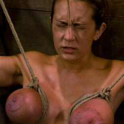 Trina Michaels in 'Kink' gets her huge tits tied and wired! (Thumbnail 7)