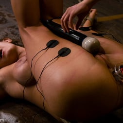 Trina Michaels in 'Kink' gets her huge tits tied and wired! (Thumbnail 14)