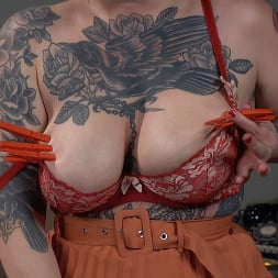 Veronica Rose in 'Kink' The House Sitter: Busty Pin-Up Babe Veronica Rose Gets Off (Thumbnail 8)
