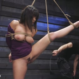 Violet Starr in 'Kink' Big Tits, Tight Dress, High Heels: New Slave Training Violet Starr (Thumbnail 6)